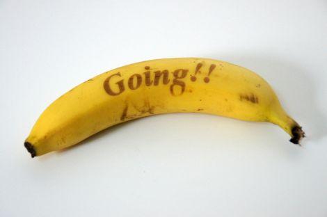 muzoo design laser banana